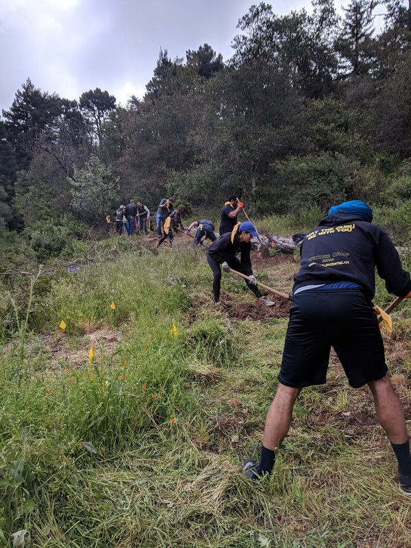 Trail Maintenance – OaklandTrails org